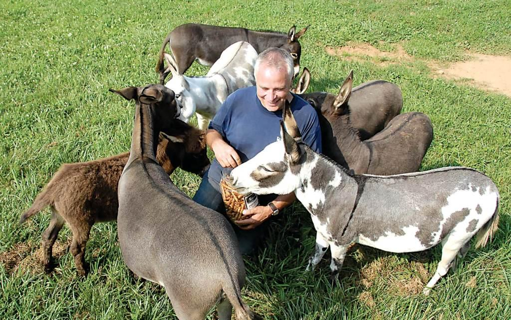 Dennis with the Donkeys